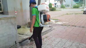 Hướng dẫn phun thuốc diệt ruồi
